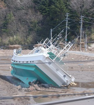 A boat carried inland a month ago by the tsunami still sits in a field, Namie, Fukushima Pref., Japan, April 12 2011 (Credit: S. L. Herman/Voice of America, via Wikimedia Commons)