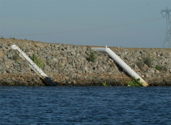 Water intake pipes along the Sacramento River (Credit: Fangue Lab at UC Davis)
