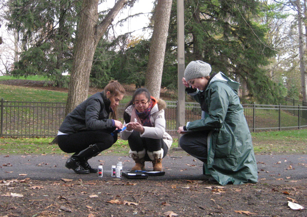 Students put a water quality testing kit to work (Credit: Hannah Julich)