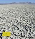 Mud curl deposits left by an evaporating lake (Credit: Kenneth Adams)