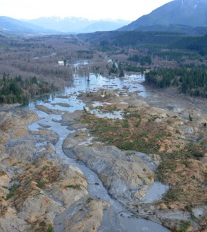 Aerial survey of the Washington mudslide aftermath (Credit: King County Sheriff's Office)