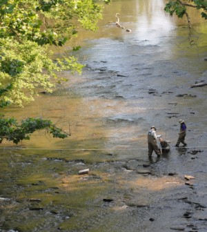 Workers from The Academy of Natural Sciences of Drexel University work in Manatawny Creek as part of the William Penn Foundation's Delaware Watershed Conservation Program (Credit: John Strickler/The Mercury)
