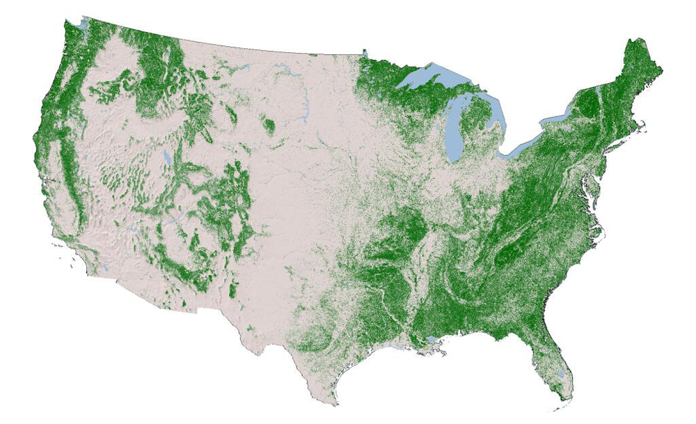 U.S. canopy cover as depicted by the 2011 National Land Cover Database (Credit: USGS)