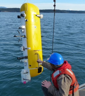 An Ocean Observatories Initiative deep profiler during testing at Friday Harbor (Credit: Tim McGinnis/APL)