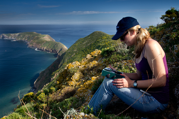A technician deploying an acoustic sensors on West Anacapa Island, Calif. (Credit: Abe Borker)
