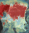 Forest cover as of 2000 shown in data layer from the University of Maryland (Credit: Maobi DRC)