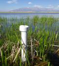 A monitoring well in a Great Salt Lake wetland (Credit: Rebekah Downard)