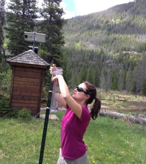 Rainfall samples collected in watershed with trees killed by mountain pine beetles helped parse out streamflow sources (Credit: Lindsay Bearup)