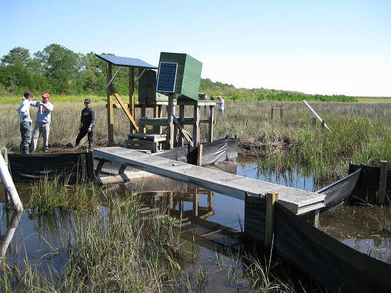 Monitoring station and flume upstream of the North River Farms marsh restoration (Credit: NC State University Department of Biological and Agricultural Engineering)