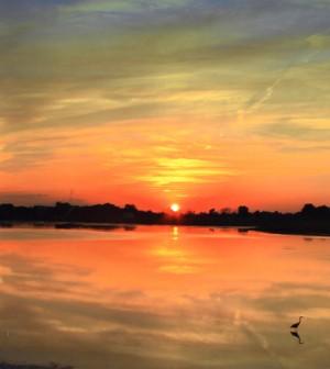 Sunset over the Shiawassee National Wildlife Refuge (Credit: Rebecca Kelly/USFWS)
