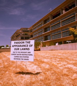 Drought and watering restrictions lead to dead lawns near Sacramento. (Credit: Kevin Cortopassi, via Flickr)