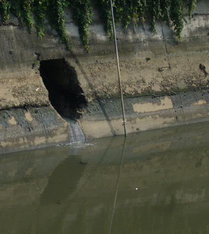 Sewage water continuously discharged into the Yangtze River (Credit: Mengzhen Xu)