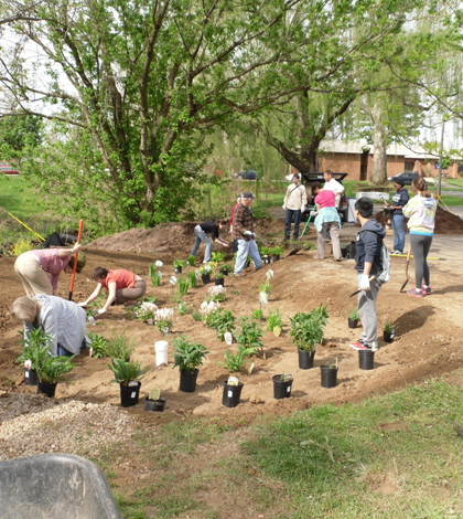 Planting the Marietta College rain garden (Credit: Andy Long)