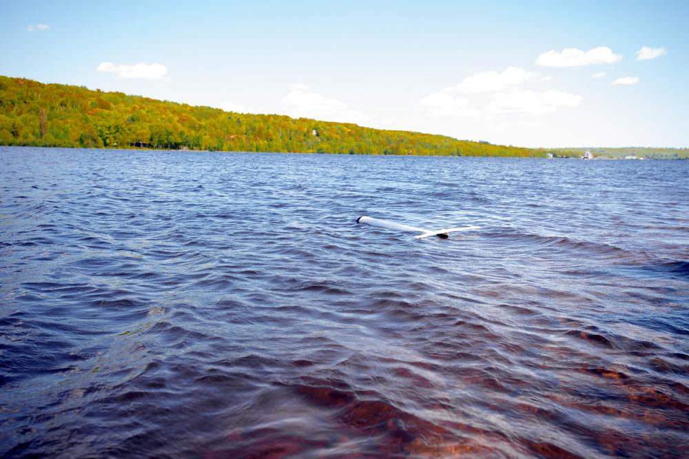 ROUGHIE in the Portage Waterway  (Credit: Sarah Bird/Michigan Tech)