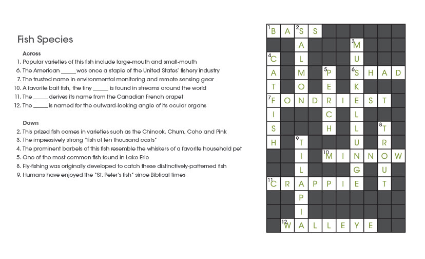 Environmental Monitor Crossword Puzzles
