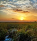 Sunrise over the Everglades seen from Pahayokee Overlook in Everglades National Park (Credit: Chris Foster, via Flickr)