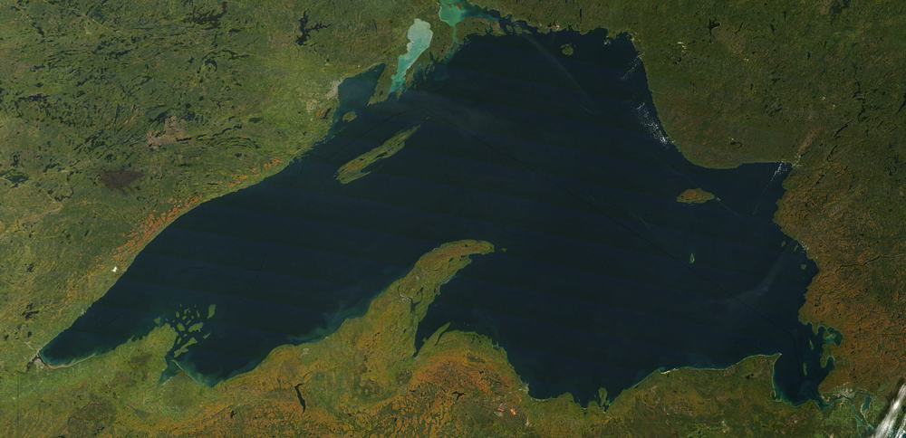 Strands linking system wide lake superior food web for Fish in lake superior