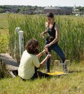 Eva Nelson and Emily McInerney take air samples from wetland plots near the Kellogg Dairy Center on June 24, 2014. (Peter Morenus/UConn Photo)