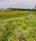 A weather station near Miller Run is an important part of the new monitoring system (Credit: Bucknell University)