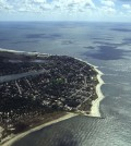 Cape May Point, N.J. (Credit: U.S. Fish and Wildlife Service, via Flickr)