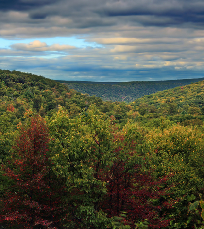 Bald Eagle State Forest in Pennsylvania (Credit: Nicholas A. Tonelli, via Flickr)