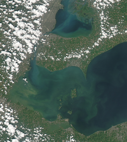 A satellite image of the algae bloom on Lake Erie on Aug. 3, 2014 (Credit: NASA Goddard Space Flight Center)