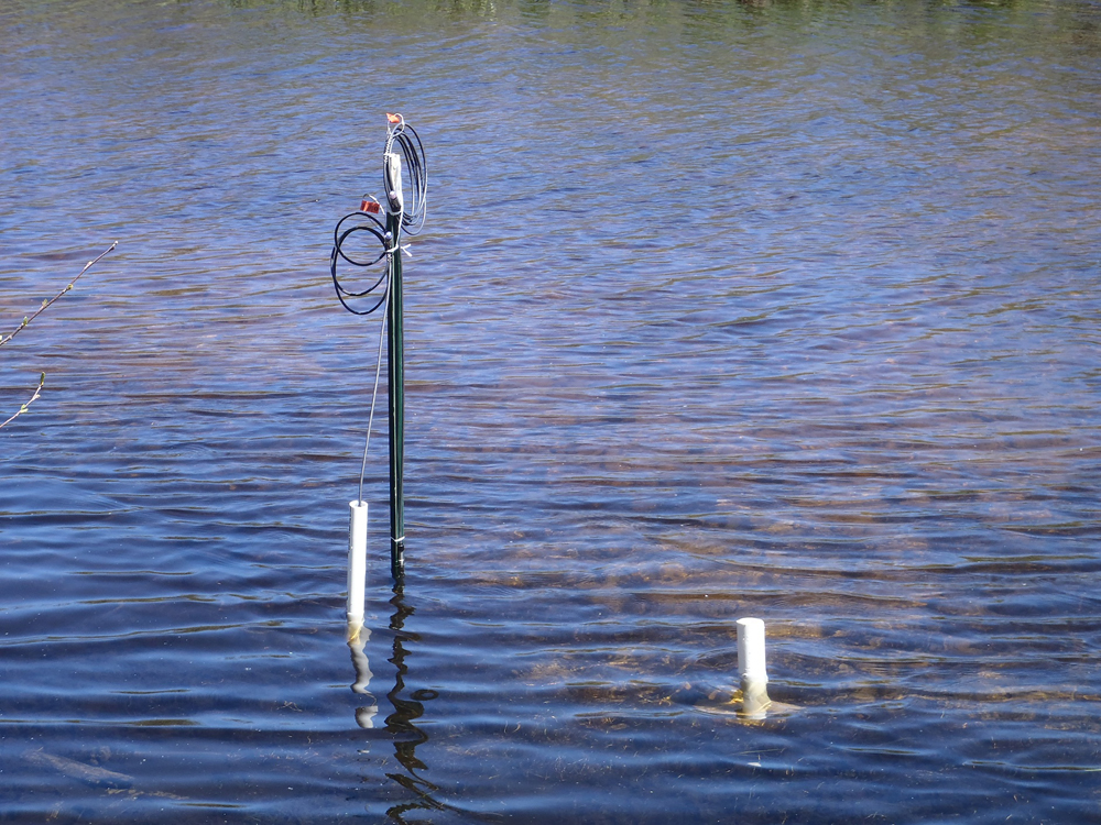 A short-term deployment for streambed monitoring in headwaters of the White River, Manistee National Forest. Site is recording synchronous hydraulic head, specific conductivity, and temperature data of upwelling groundwater and streamflow at 5 minute intervals. (Credit: Paul Doss)