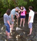 Stream Team volunteer Pat Costello teaches students with Big Sky Youth Empowerment to collect macroinvertebrates on Bozeman Creek. (Credit: Katherine Boyk)