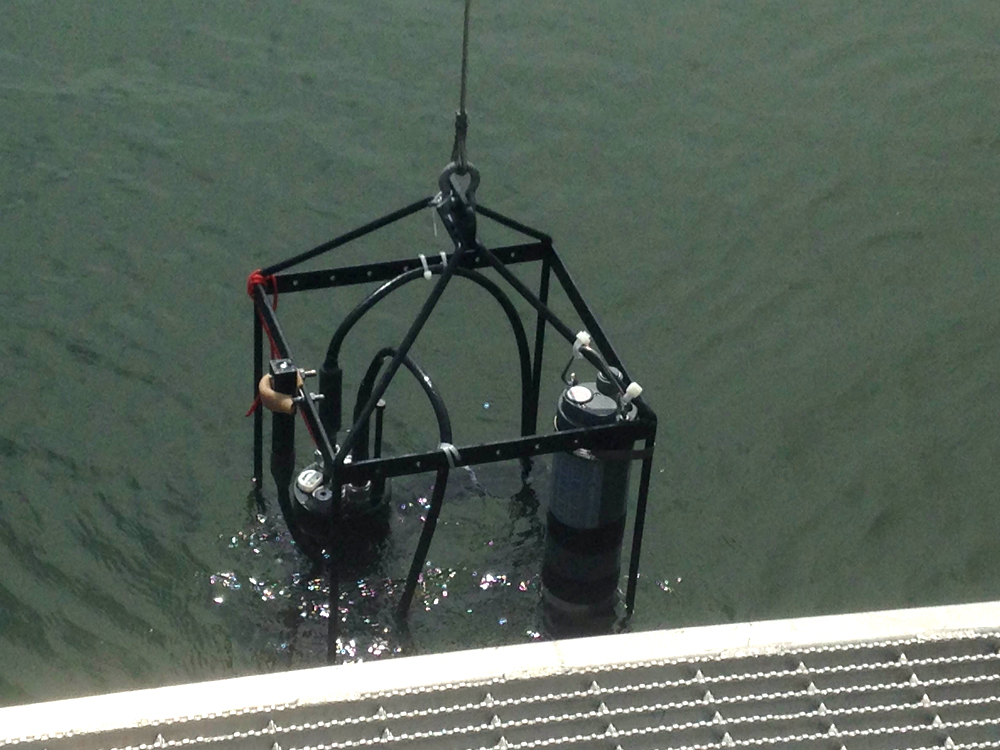 The YSI sonde and HydroRad mounted to a cage being lowered into the water (Credit: Heather Cronin)