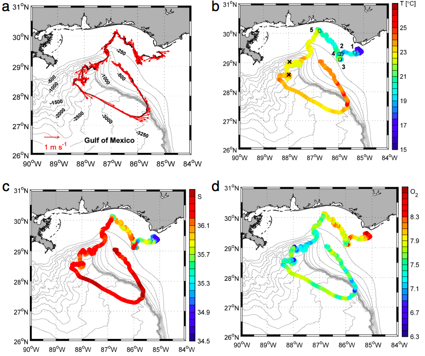The SailBuoy's path through the Gulf with (a) velocity vectors , (b) temperature , (c) salinity and (d) oxygen concentration. (Credit: M.H. Ghani et al./CC BY-NC-ND)
