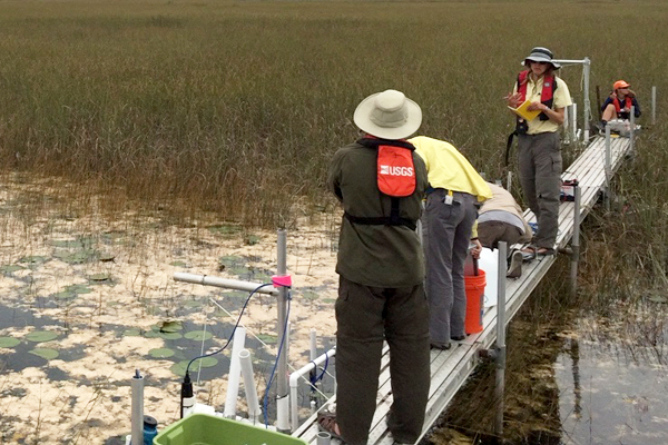 florida everglades / USGS and SFWMD scientists measuring water velocity and suspended sediment concentration downstream of flow release on a raised platform that spans from a deepwater slough (foreground) into a sawgrass ridge. (Credit: USGS)
