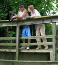 Volunteers with the Huron River Watershed Council measure water quality with a handheld meter. (Credit: Huron River Watershed Council)
