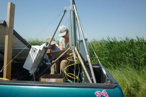 Researchers program an eddy flux tower at the wetland in summer 2012. (Credit: Jaclyn Matthes)