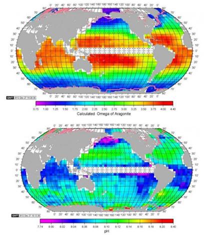 New global maps give a better look at ocean acidification. (Credit: Taro Takashi)