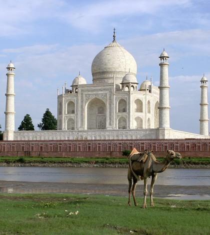 Taj Mahal world heritage site in Agra, India. (Credit: David Castor)