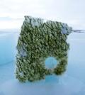 Algae living beneath the ice. (Credit: Lars Chresten Lund-Hansen)