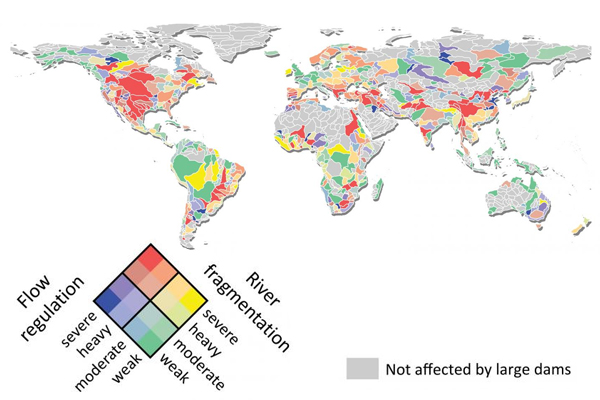 Map showing the effects of dams on the rivers around the world. (Credit: McGill University)