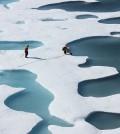 Melt-season Arctic ice. (Credit: NASA Goddard Space Flight Center)