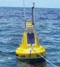 The buoy is deployed near artificial reefs popular with anglers and divers (Credit: SCCF)