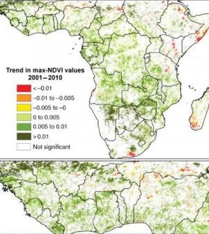 Trends in vegetation greeness over 10 years. (Credit: Heiko Balzter, et al)