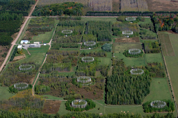 An aerial view of the former Aspen Free-Air Carbon dioxide and ozone Enrichment (Aspen FACE) experiment site. (Courtesy John Couture, UW-Madison)
