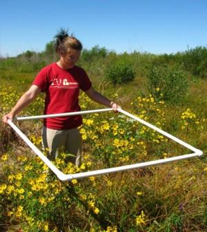 Indiana University student, Anya Hopple, collecting wetland data. (Credit: Indiana University)
