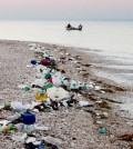 Plastic pollution lines a beach. (Credit: Timothy Townsend)