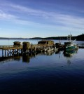 Researchers are using Friday Harbor Labs to study Puget Sound acidity. (Credit: J. Meyer / UW)