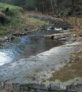 Researchers at Penn State are looking to streams for shale gas contamination. (Credit: Paul Grieve / Penn State)