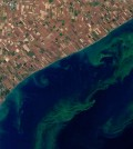 Agencies hope to use satellites to detect harmful algal blooms. (Credit: USGS / NASA Earth Observatory)