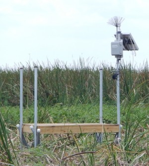 An Airmar 150WX Ultrasonic Weather Station sits on top of a solar-powered NexSens data logging system in a vegetated wetland overseen by the South Florida Water Management District. (Credit: Zaki Moustafa, SFWMD)