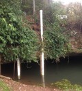 The Western Kentucky University monitoring site at Lost River Rise. (Credit: Jason Polk)