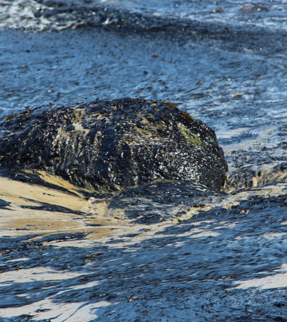 Oil from the Refugio Oil Spill. (Credit: Zackmann08/CC BY-SA 3.0)