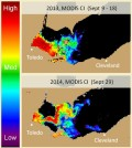 Extent of the Lake Erie algal bloom in 2013 and 2014. (Credit: NOAA)